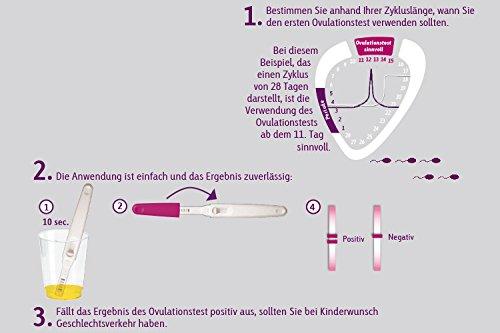 Cyclotest Ovulationstest - Eisprung-Test zur Bestimmung der fruchtbaren Tage bei Kinderwunsch ...